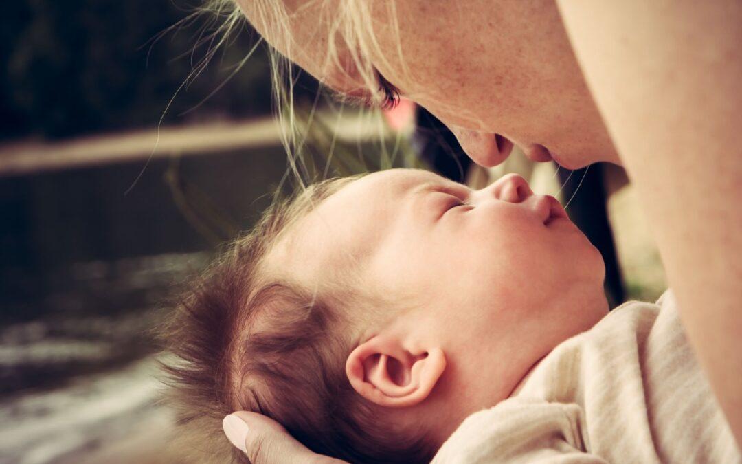 Lebkouni v porodnicích